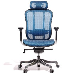 Miller Aaron game chair mesh blue